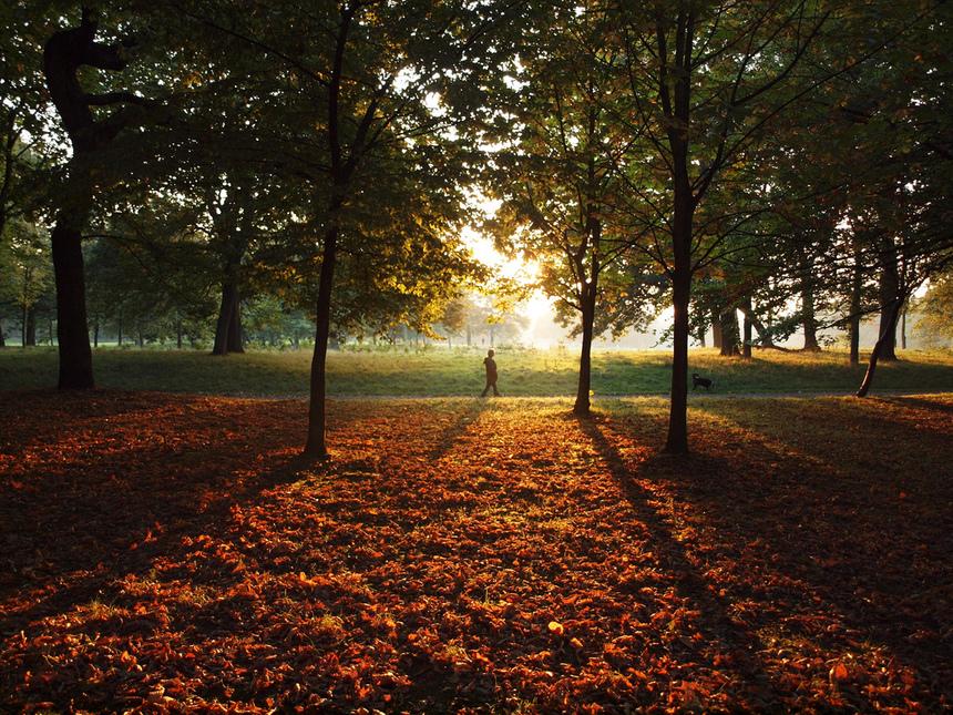 autumn liverpool
